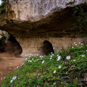 Gli Etruschi nell'alta maremma – Colline Metallifere
