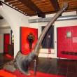 MUSEO DELLE ARTI IN GHISA NELLA MAREMMA, MAGMA  – Follonica