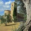 CONCATTEDRALE DI SANT'ANTIMO MARTIRE – Piombino